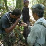 Evidence of Hornbills on Koh Ra