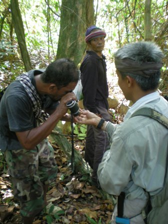 Hornbill expert finds something interesting