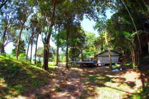 Dining at Koh Ra Thailand camping