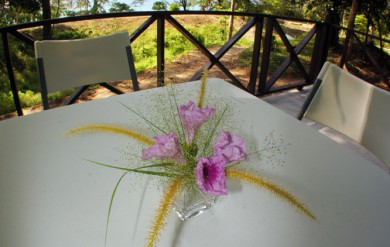 Thai cuisine at Koh Ra Beach Camp
